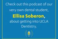 Podcast with Ellisa Soberon